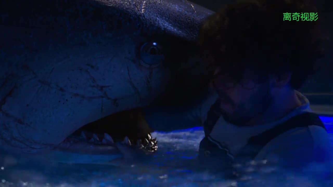 #经典看电影#大兄弟你心里是什么感觉 伸到鲨鱼嘴里,又惊又险