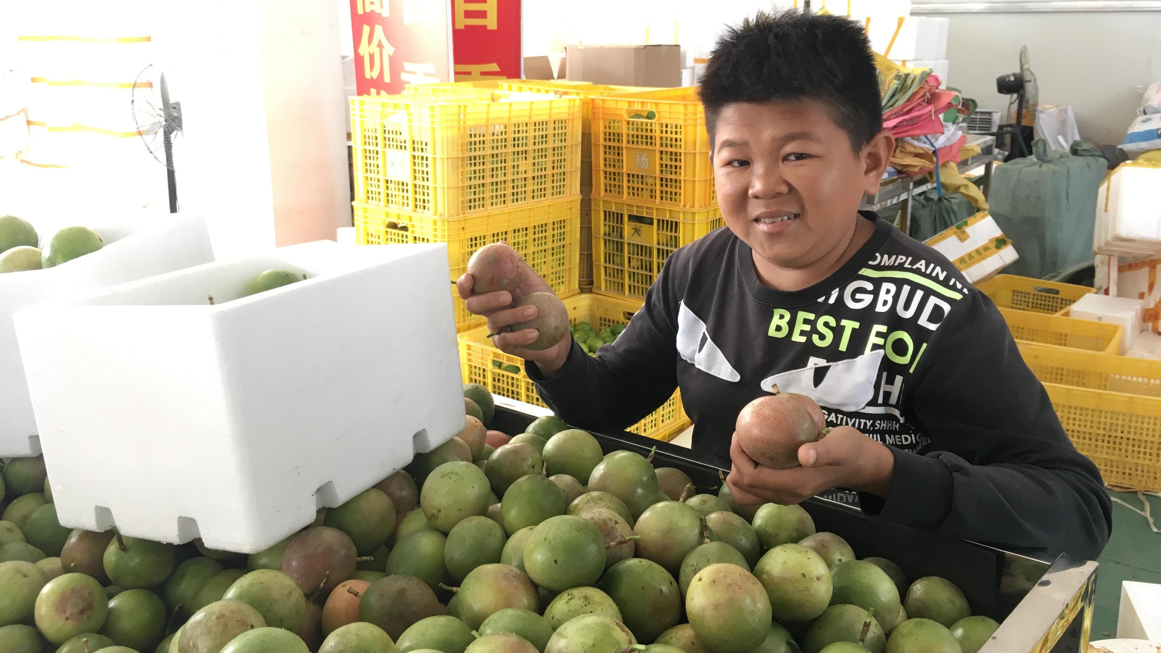 原来百香果这样吃,小六现场解答售后遇到的问题,国庆贴心送柠檬