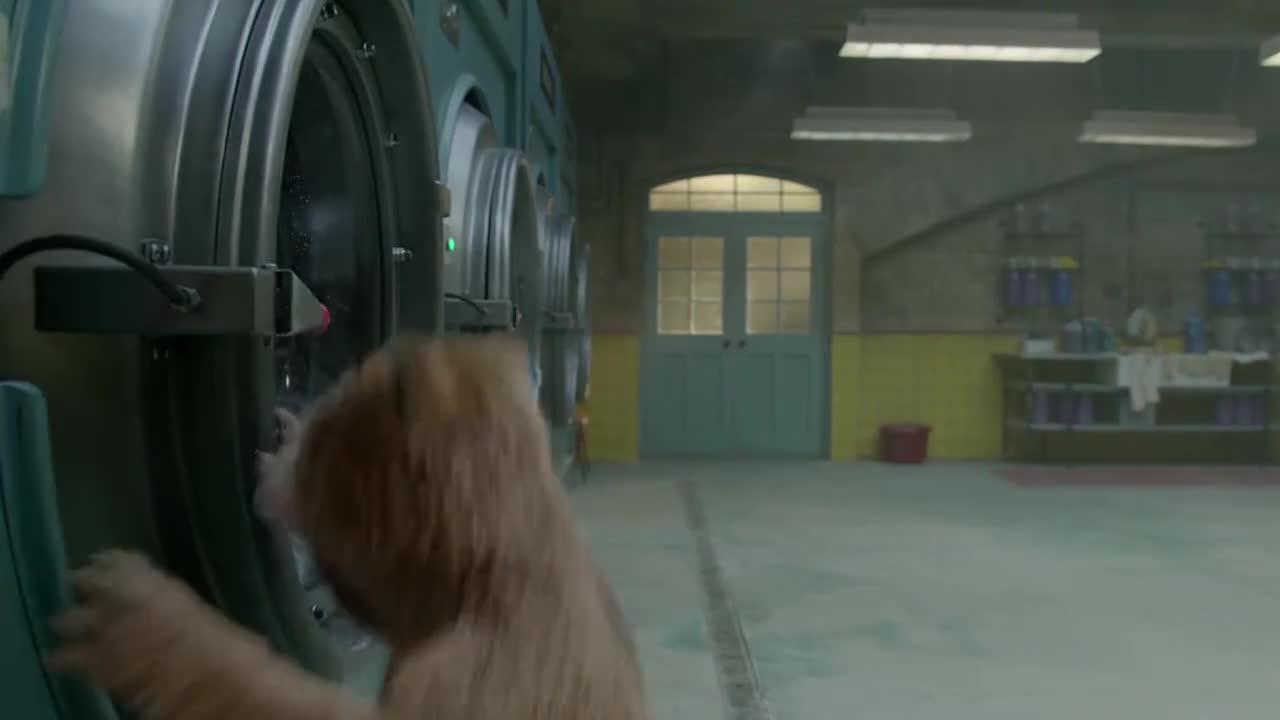 小熊在洗衣服时,放进去个红袜子,结果狱友们都穿了粉红色的衣服
