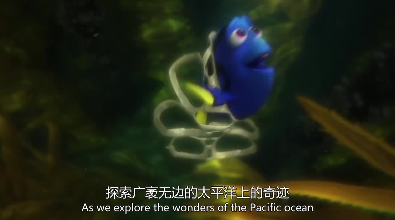 《海底总动员2》小伙伴被人类抓走