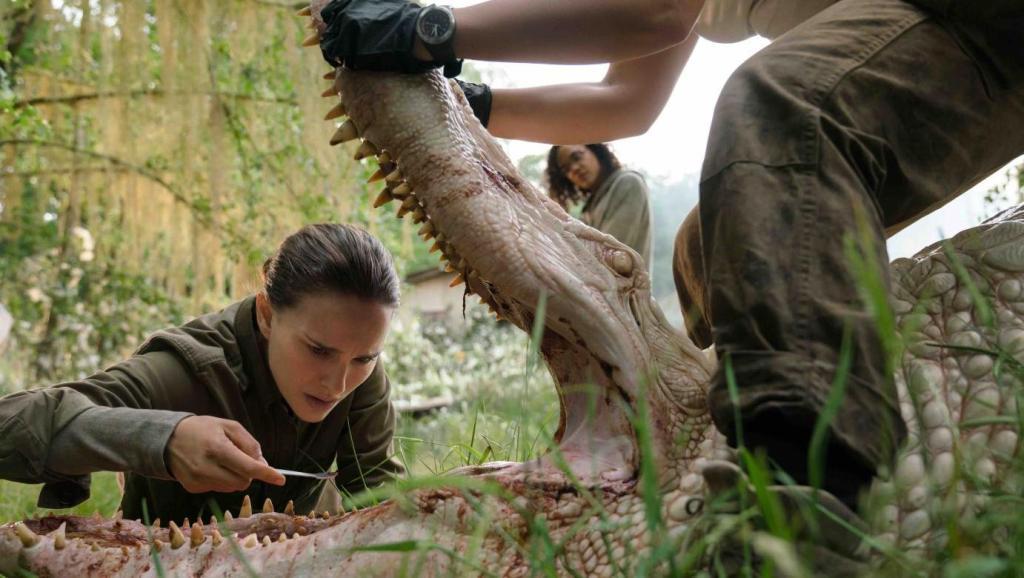 #电影最前线#5米长的大鳄鱼嘴里长出鲨鱼的牙齿,是末日的预兆还是基因变异?