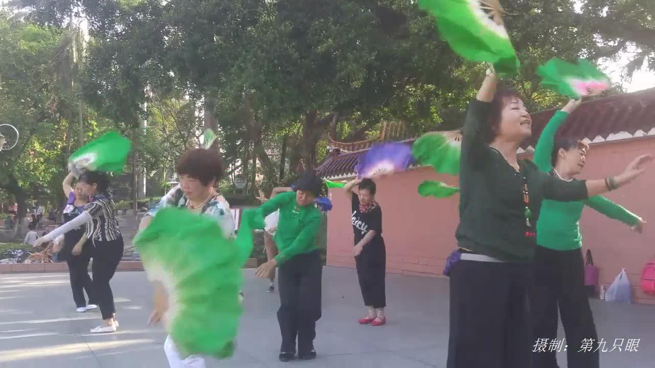 妇女们早晨在公园学练扇子舞场景,一个个特别认真,越跳越熟练