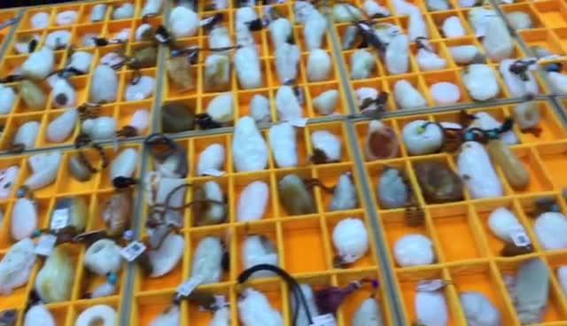 #新疆和田玉籽料#苏州买的和田玉是真的籽料吗?现场鉴定皮色毛孔!