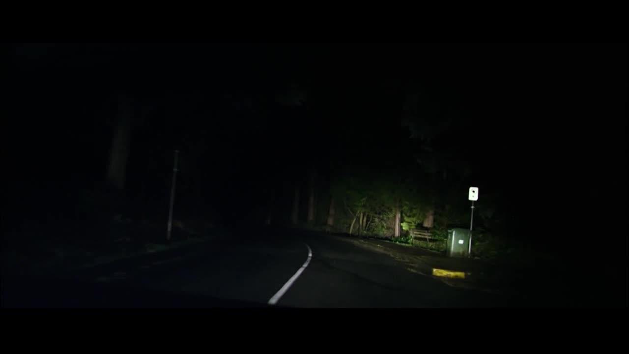 女子深夜坐车,拍下司机驾照发微博,真聪明