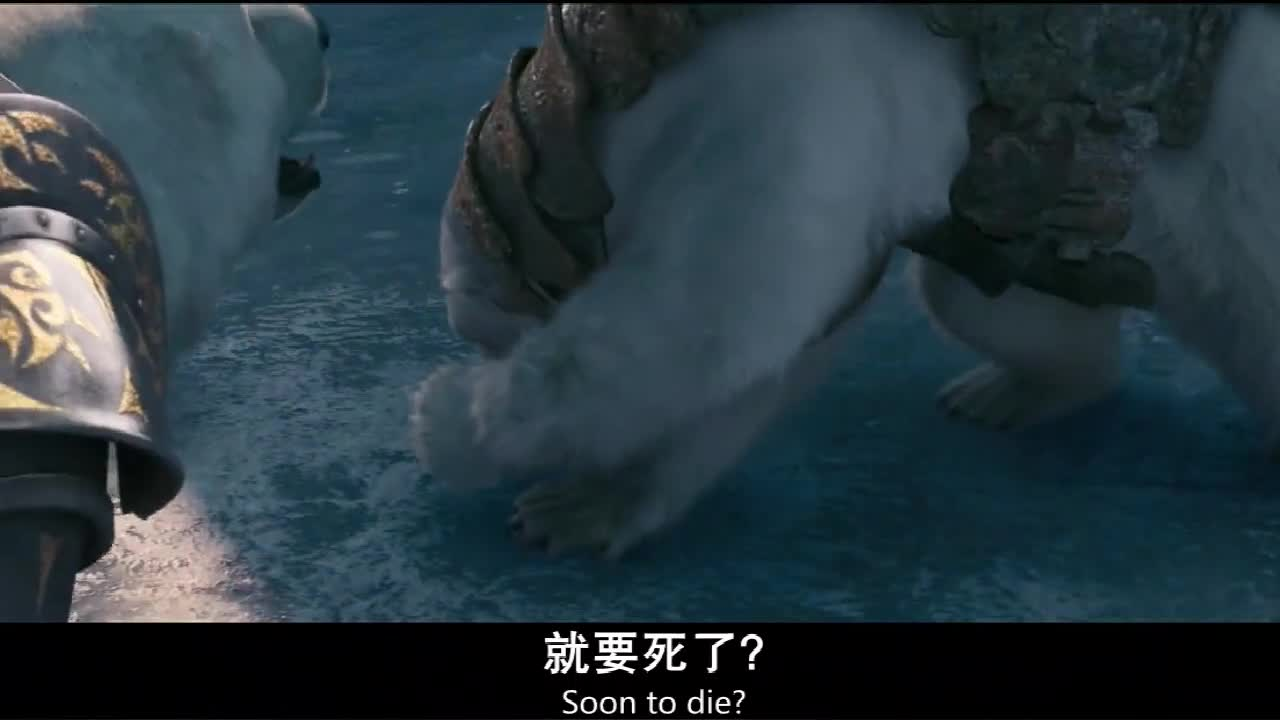 北极熊争夺国王之位,一击秒杀残暴熊王