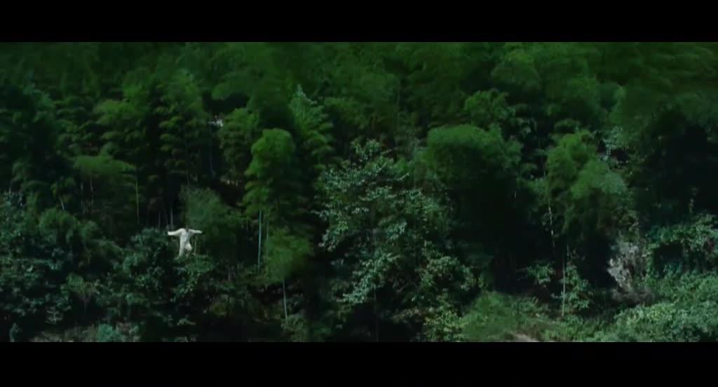 章子怡为剑跳下瀑布,被神秘人救走,发哥追人追丢了