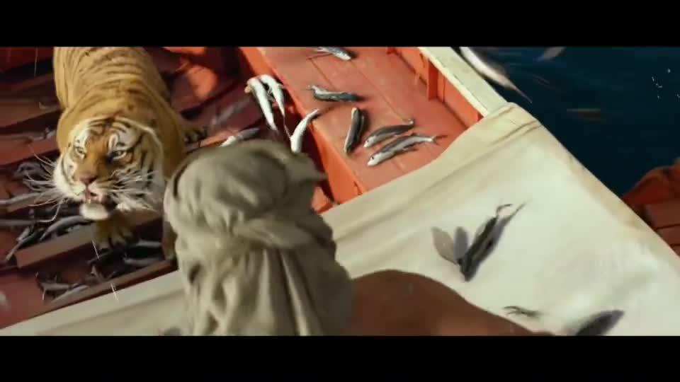 #电影迷的修养#一人一虎被困船上,突然飞上来条大鱼,小伙为了活命从老虎口中夺食