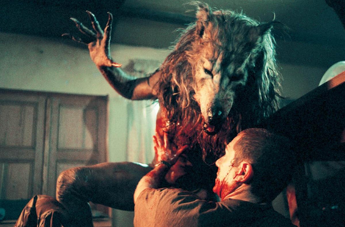 #惊悚看电影#狼人恐怖电影盘点:闪灵战士