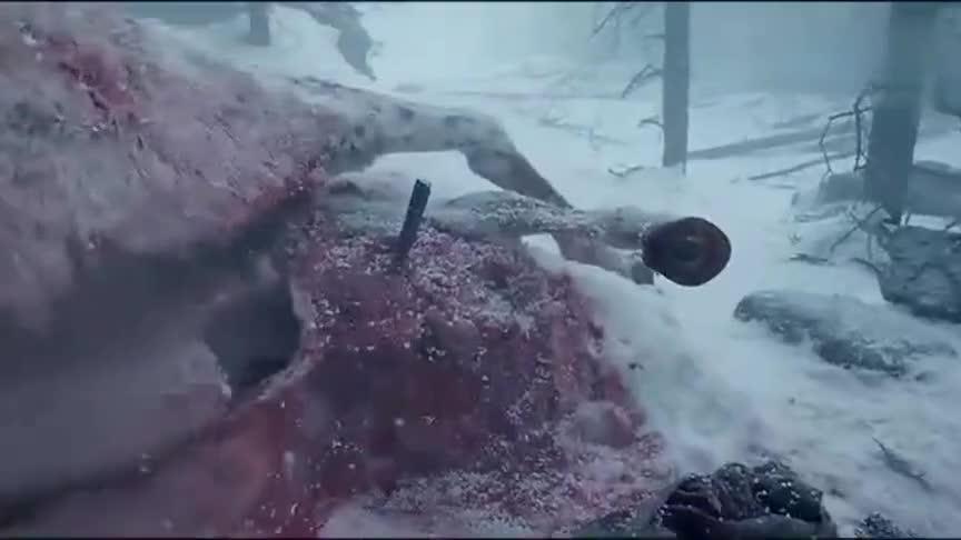 #追剧不能停#为了不被冻死,只能钻进死马的尸体里取暖