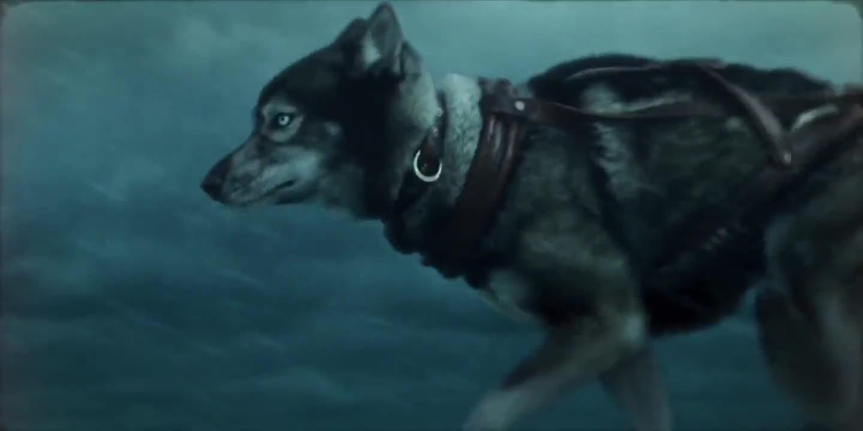 #经典看电影#冰面随时都会破裂,老人带着雪橇犬无惧横跨