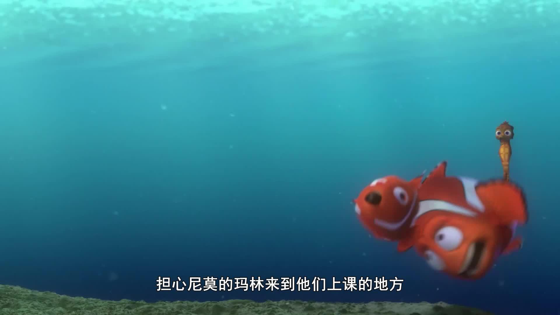 儿子被渔民捕捉走了,父亲为了救他,踏上了拯救儿子的道路