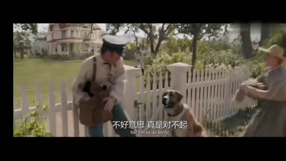 """一只被全镇都宠着的狗狗,像极了被宠坏的""""神兽"""""""