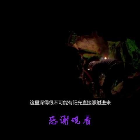 #影视#《黑暗侵袭》人群与怪物,怪物战
