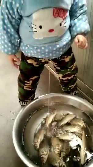 刚钓回来一盆鱼,这小子就干坏事,这鱼还能吃吗