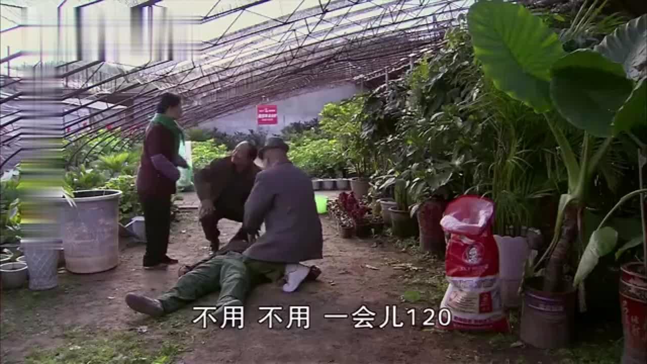 #搞笑趣事#刘能谢广坤想办法救赵四,赵四装晕倒地上,两人配合默契诈赵四