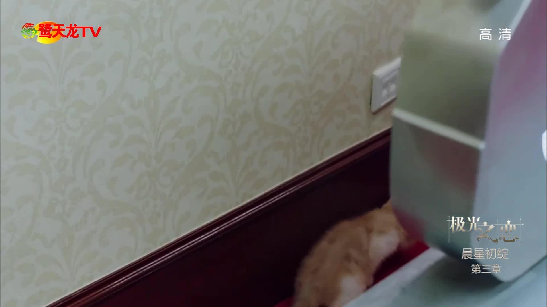 又被锁了?星子俊泰同床被偷拍