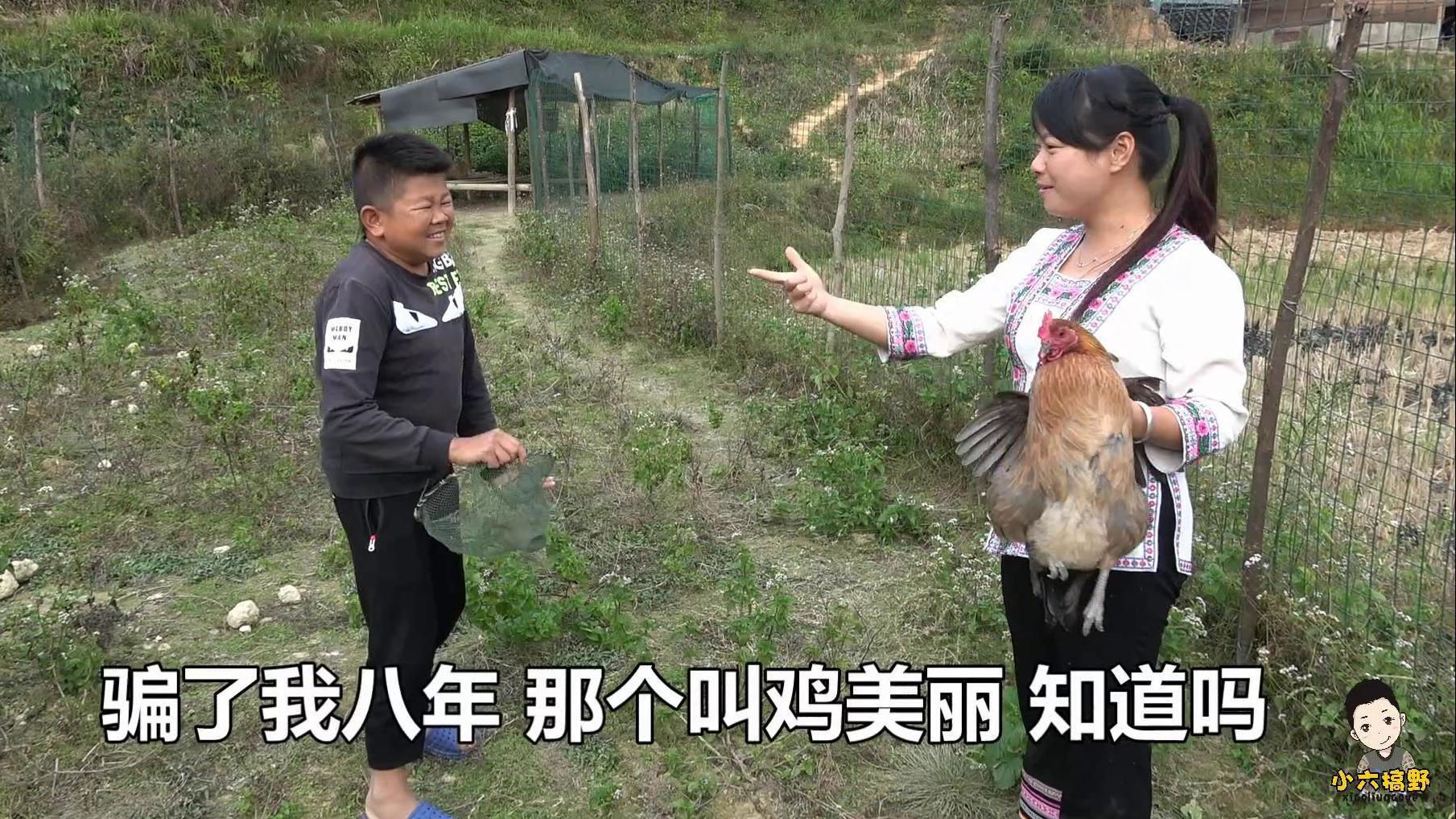 户外欢乐捉鸡,小六手起网落今晚吃鸡,秋子自爆吃了8年鸡美丽