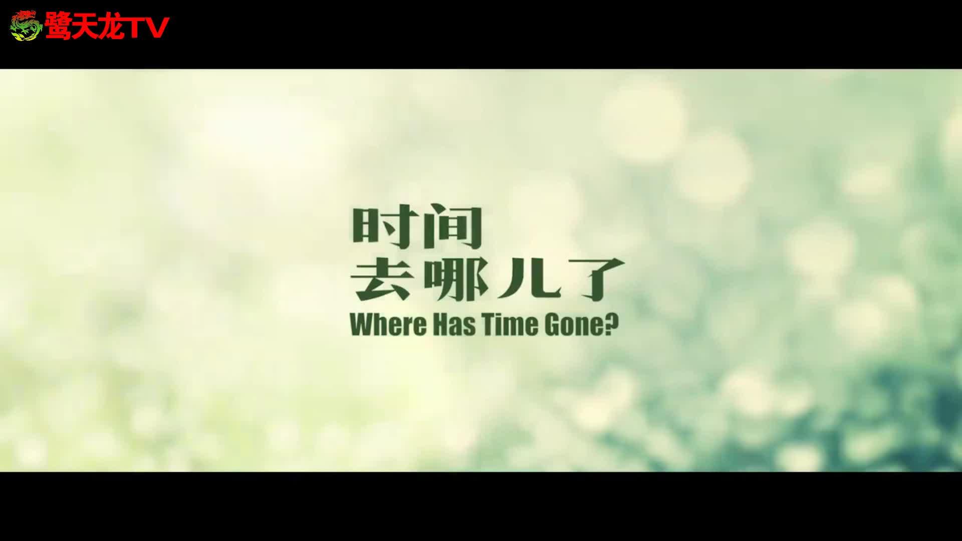 《时间去哪儿了》国际大导首度携手 一片尽览五种画风