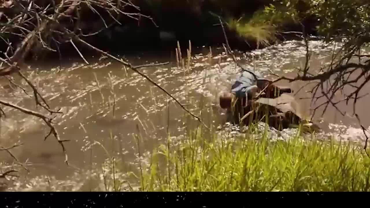 #经典看电影#人小鬼大,莫欺少年穷,极强视觉冲击的冒险片