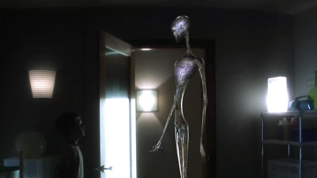人类灭绝后地球被外星人考古,一个男孩活了下来,但他却不是人类