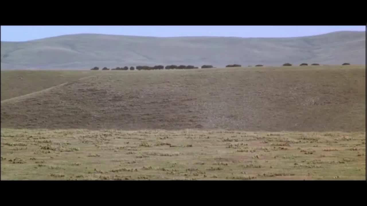 印第安人在草原上追着几万头野牛跑,整个地面感觉像在地震!