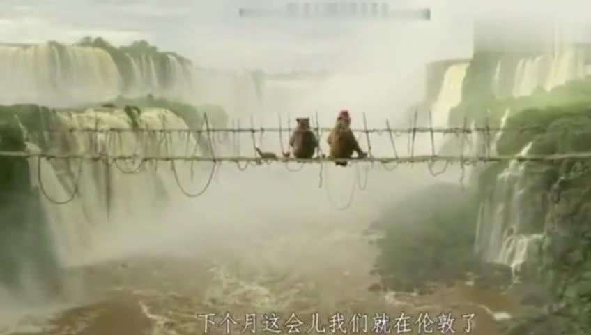 #经典看电影#《帕丁顿熊2》不一样的开场,我们的主角就这样漂过来了
