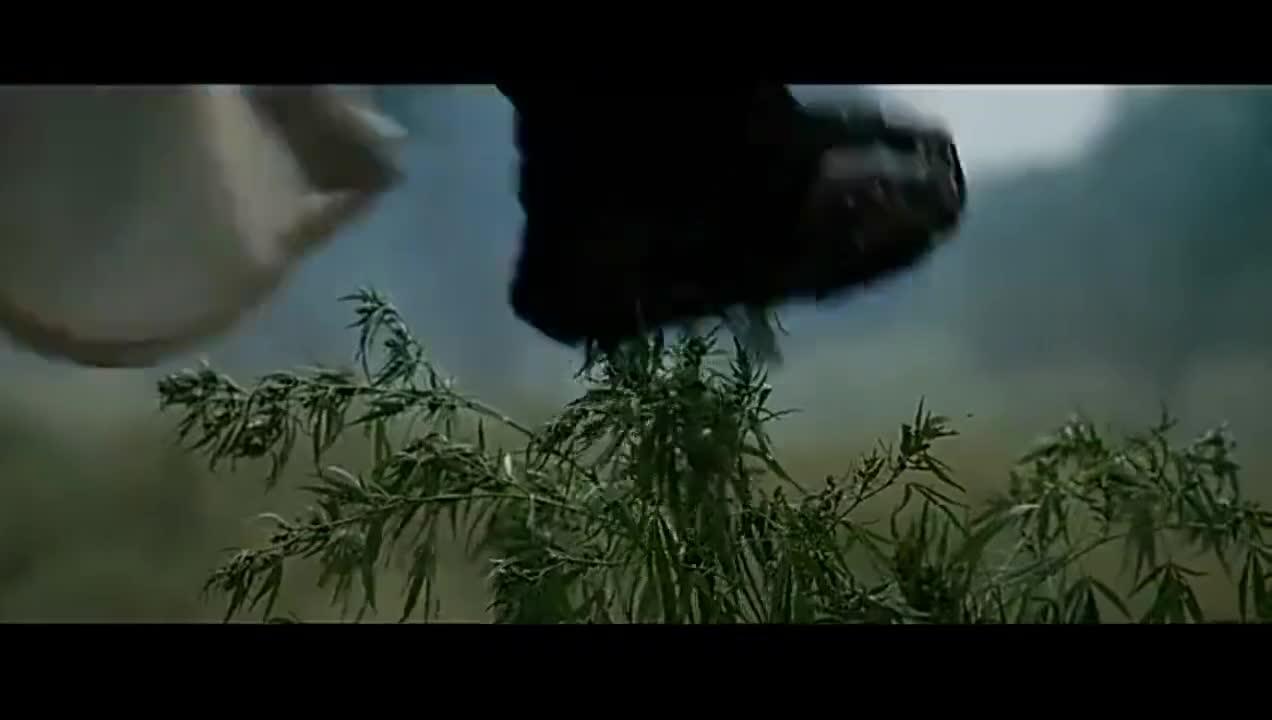 #电影迷的修养#一个在草上飞,一个在地上跑,这就是不会轻功的区别
