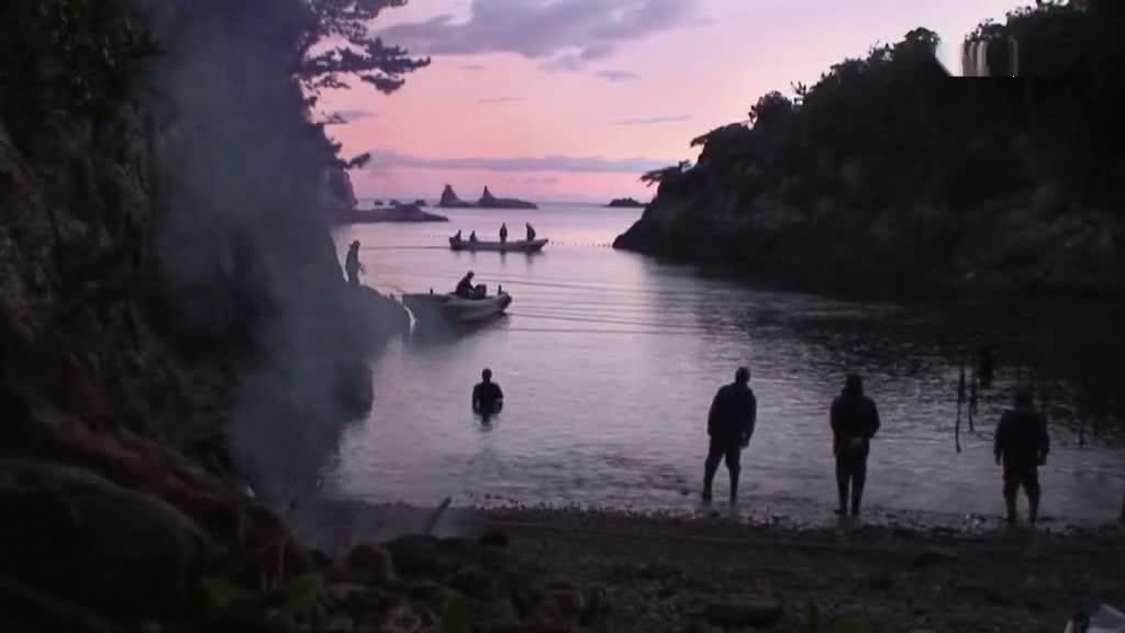 人类为了捕杀海豚,鲜血了染红整片海域,令人触目惊心
