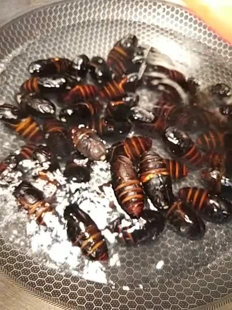#舌尖上的美食#麻辣蝉蛹,一口一个,嘎嘣脆,吃得太香了!