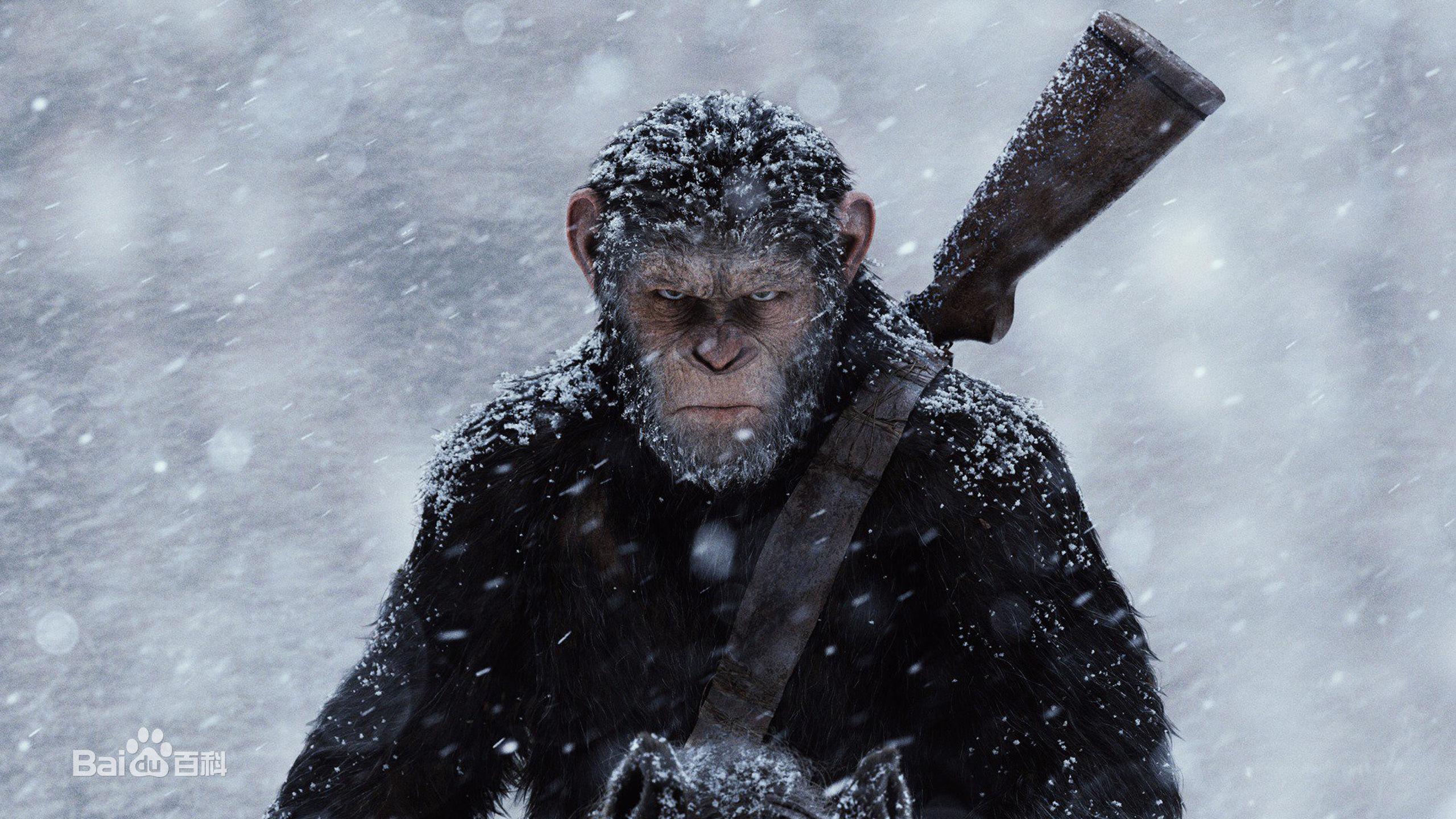 #经典看电影#俗哥说电影,美国科幻片《猩球崛起3:终极之战》