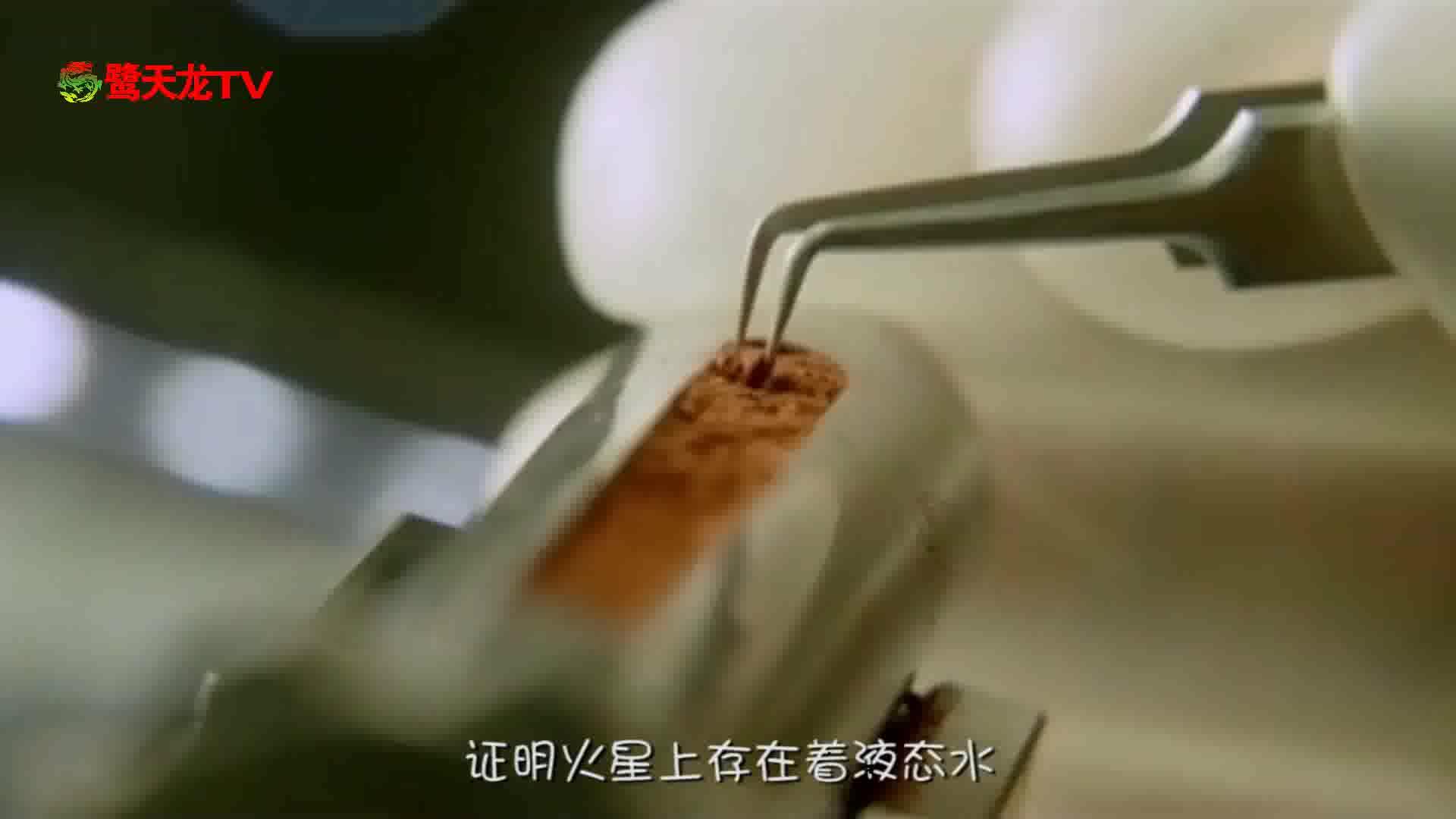 《异星觉醒》全程吓尿!堪称低配版《异形》?