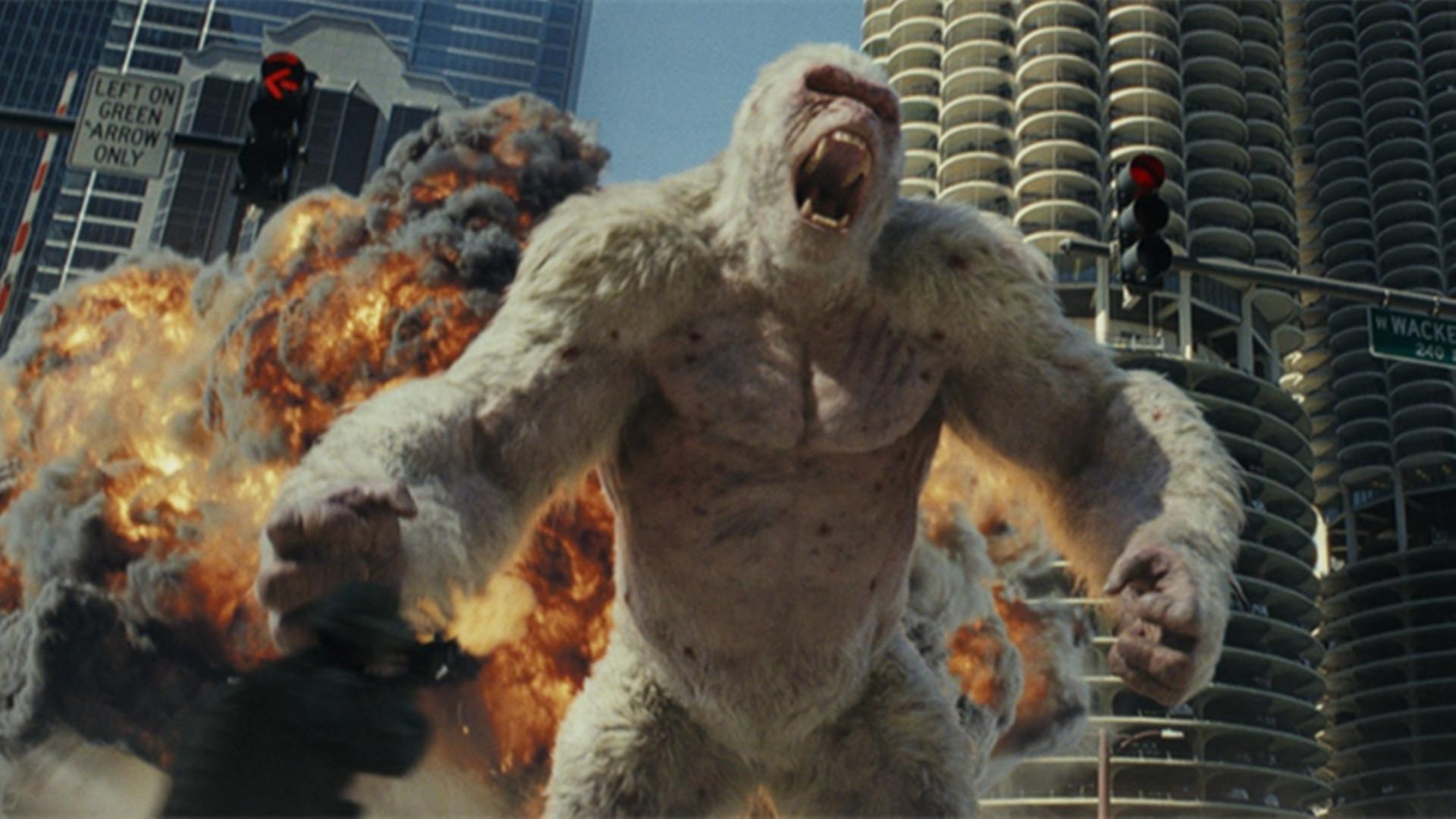 #电影最前线#一只猩猩撑起这部电影,巨石强森来打酱油吗?