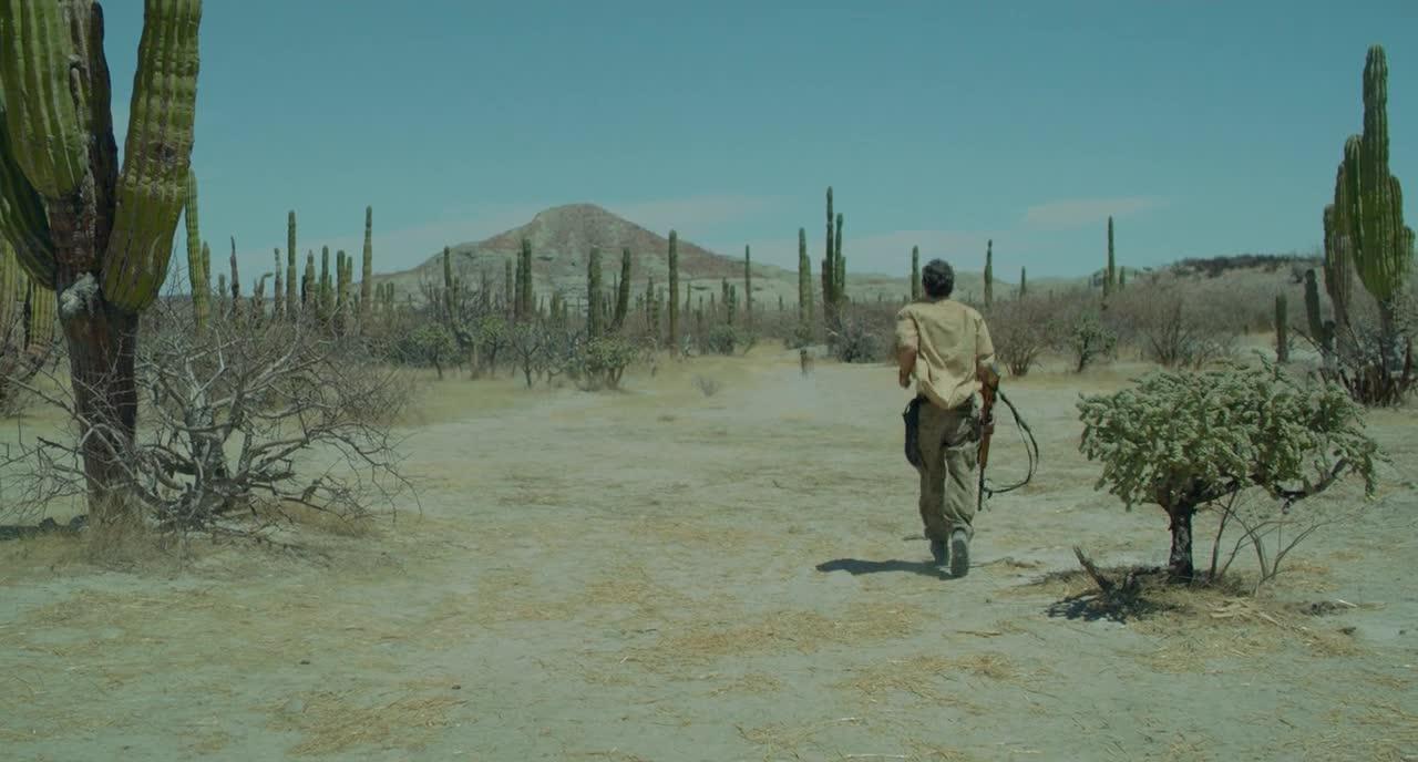 非法移民者的故事—《绝命荒漠》