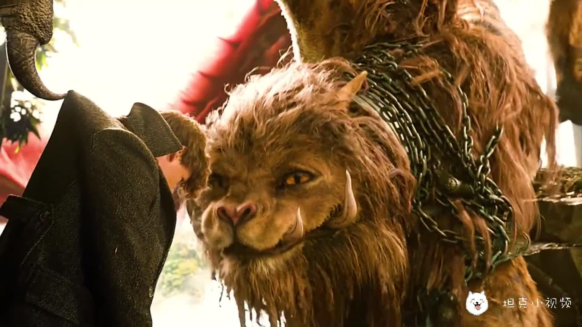#电影迷的修养#这是中国的神兽,有没有人认识!(剪辑不易,求个赞)