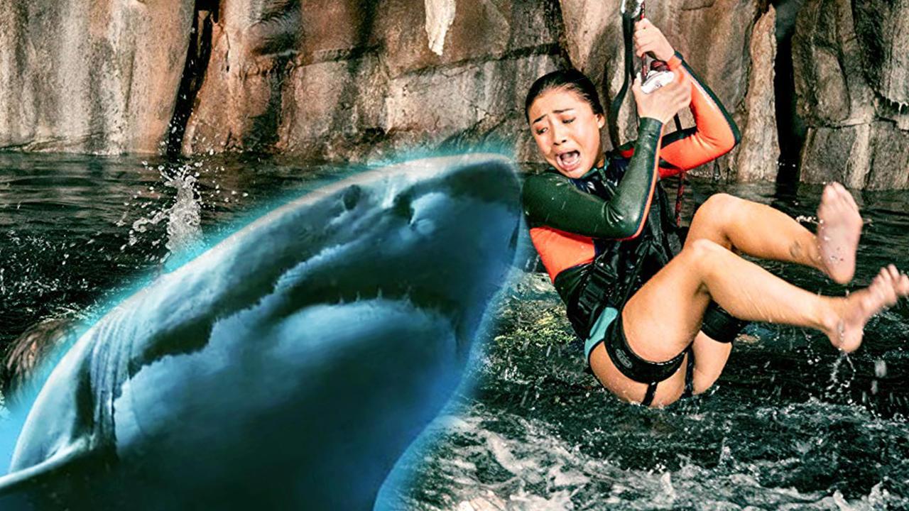 """#追剧不能停#年度最""""鲨""""电影,告诉你如何坑爹坑队友,无情吐槽《鲨海逃生》"""