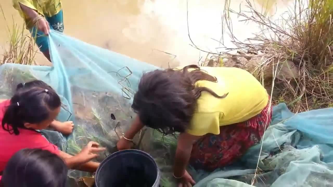 几个小姑娘就能横行小沟,小虾小鱼随便捞