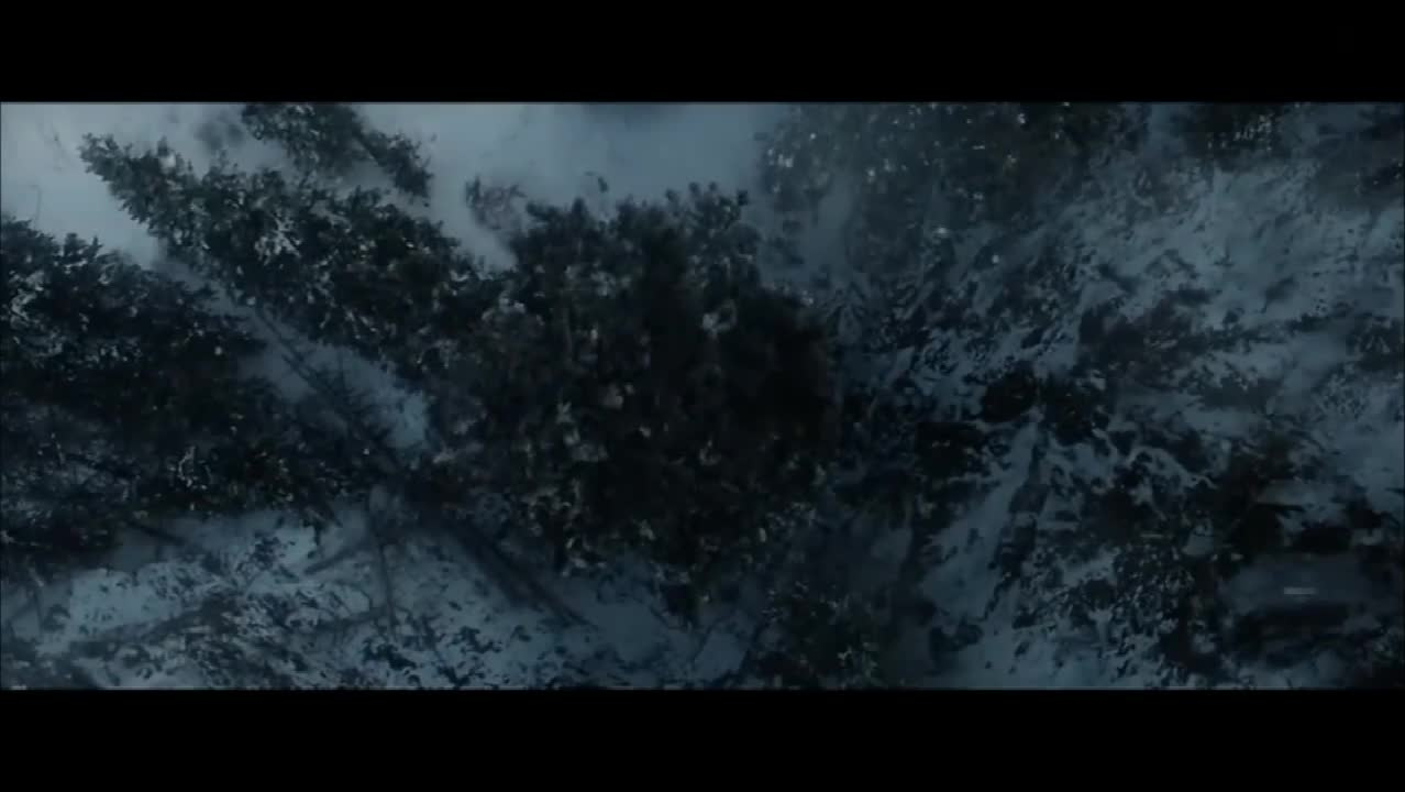 #电影#《荒野猎人》片段:小李子悬崖坠马,钻进死马肚子求生!