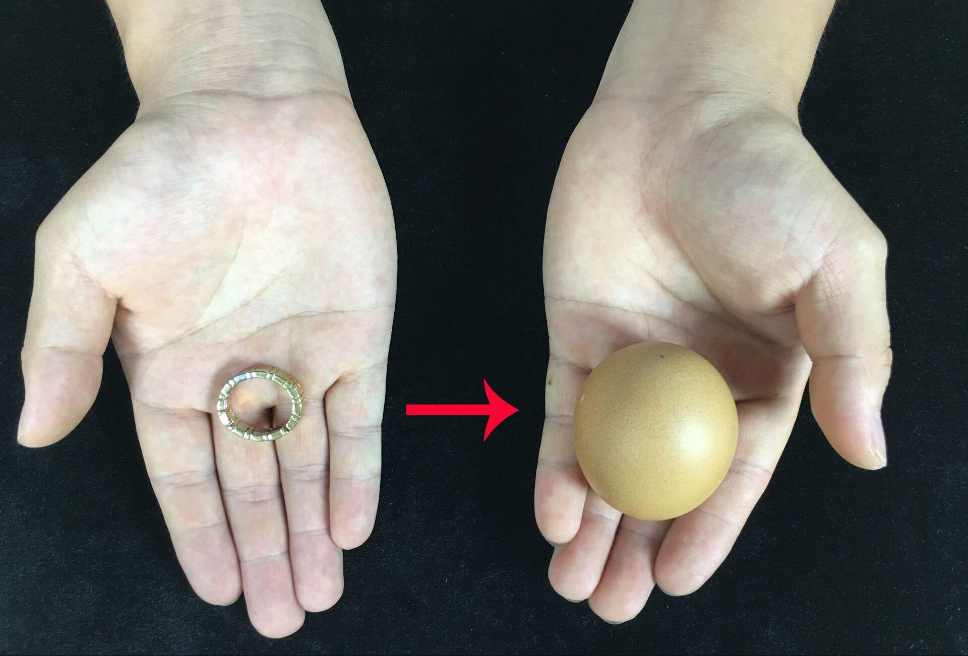 #魔术教学#神奇魔术:戒指瞬间穿越鸡蛋,鸡蛋完好无损!看出破绽算你厉害