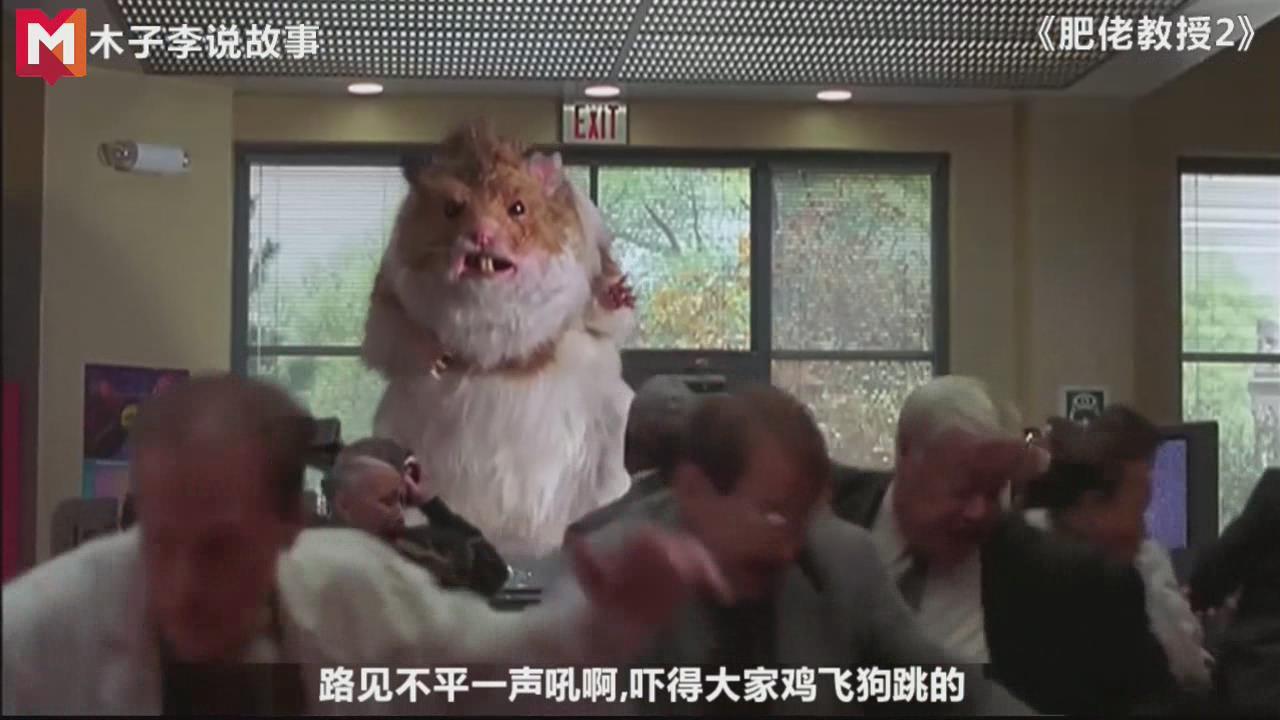 #老司机求片名#木子李说故事,体长8米的大老鼠,对美国人毫不客气啊!