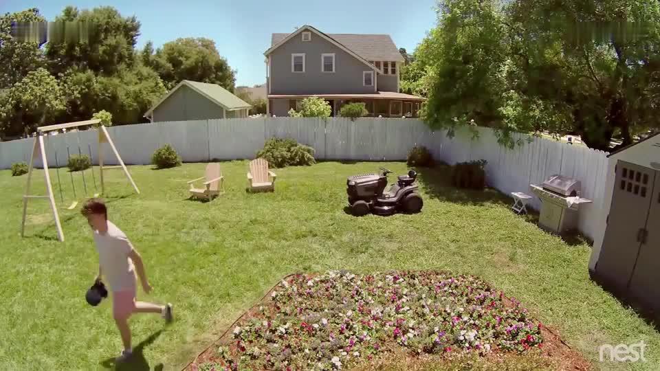 主人刚离开20秒 花园就变成这个样子 看完监控主人当场无语了