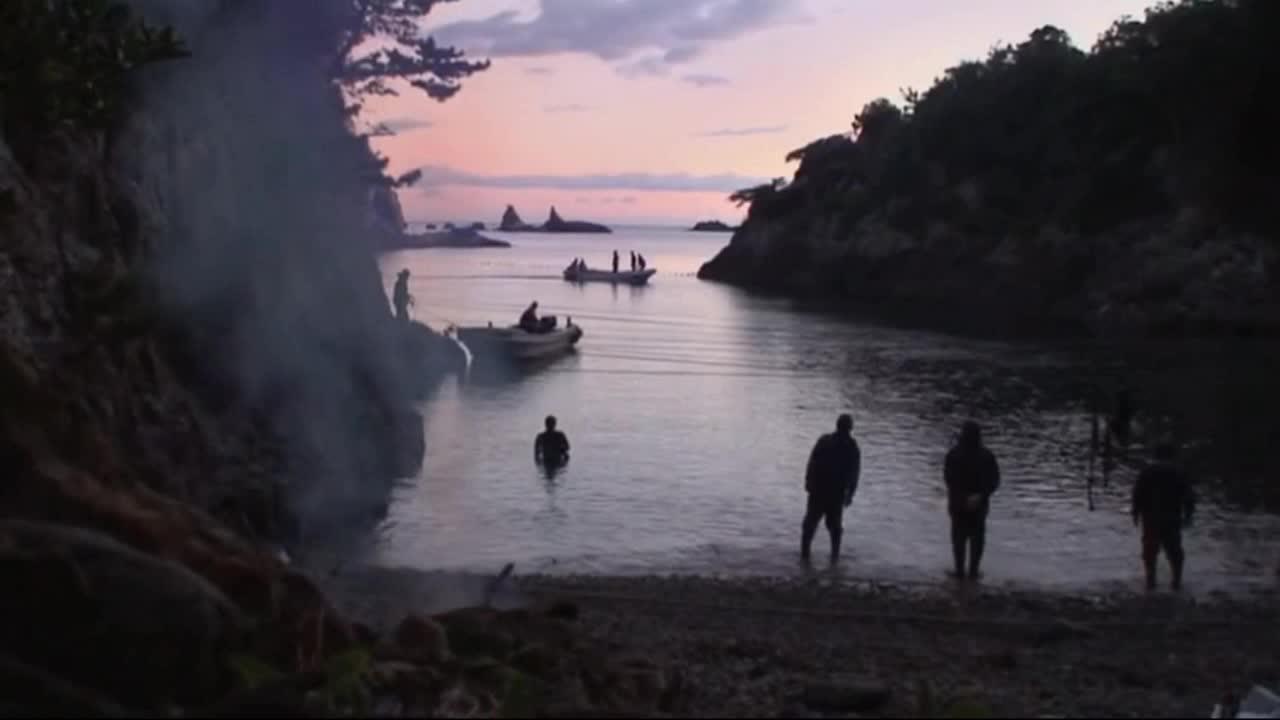 #经典看电影#《海豚湾》为了捕杀海豚,那染红整片海域的鲜血,令人触目惊心