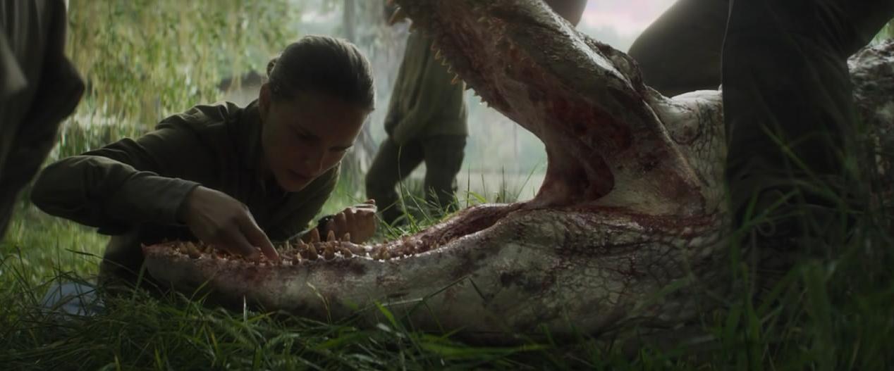 #惊悚看电影#世界之大无奇不有,5米长的鳄鱼嘴里长着鲨鱼的牙齿,太可怕了