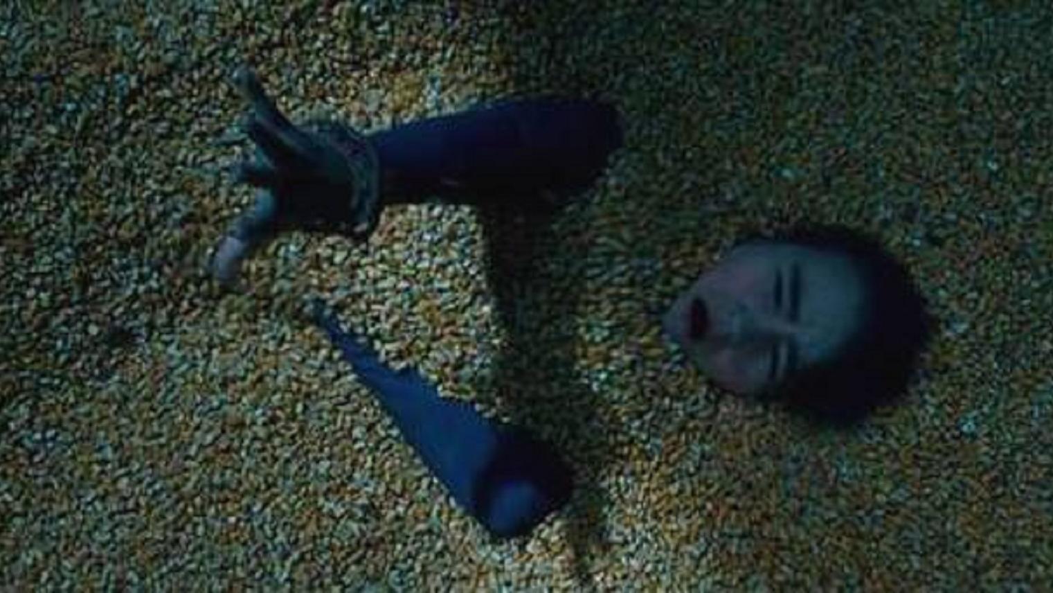 #电影迷的修养#美国人气恐怖片《寂静之地》:想要活命,就必须保持安静!