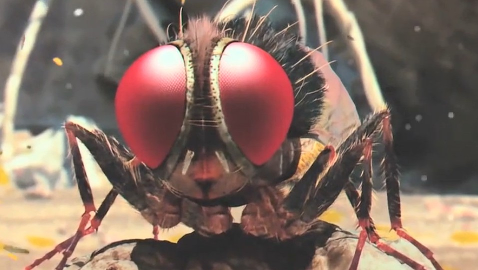 #经典看电影#穷小伙被情敌所杀,转世成一只苍蝇,进行一场复仇行动!