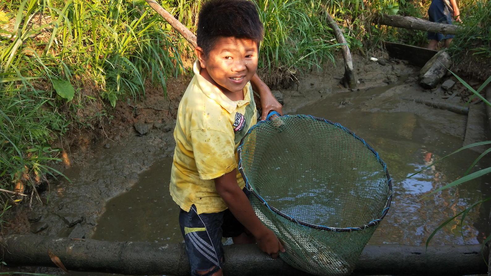 小小鱼塘也藏有大货,小六趁机放塘捉鱼,鱼儿肥美今晚晚餐有了
