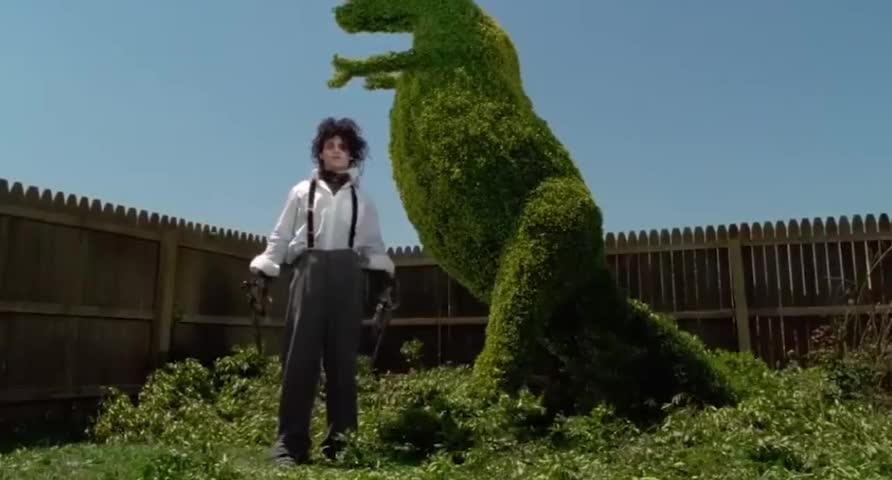 一盏茶的功夫,他把一棵树修成一只恐龙,真的很佩服