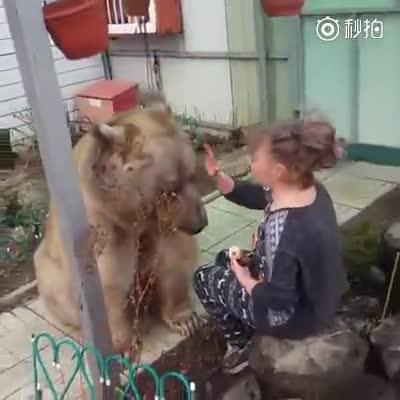 养这种宠物是需要勇气的,看来熊是不太饿啊!