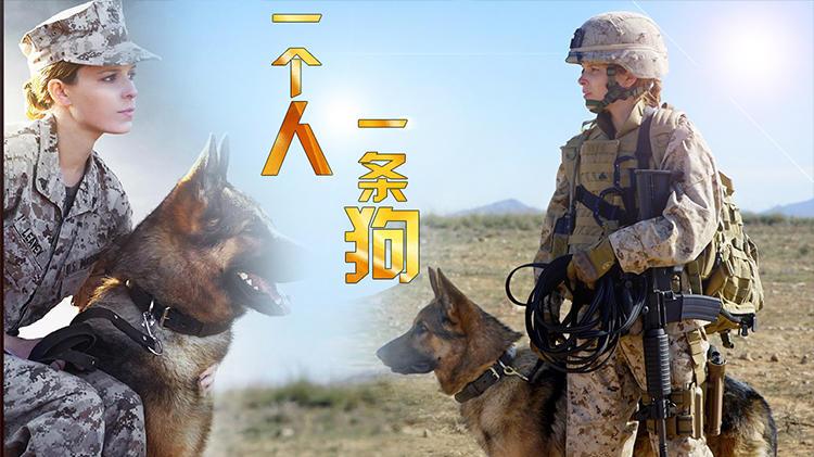 五分钟看完《战犬瑞克斯》狗与人类诠释最美好的友情