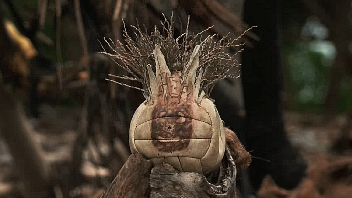 #电影迷的修养#速看电影《荒岛余生》:如何在荒岛坚持4年,真人版绝地求生!