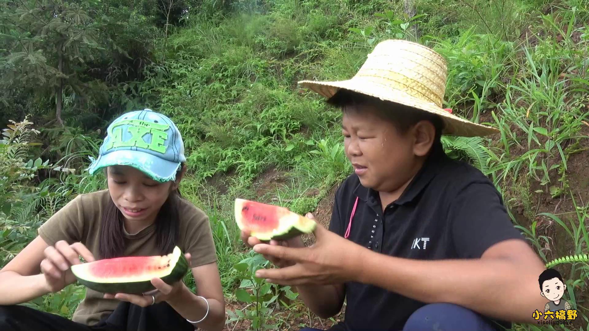 小六和六嫂到山上摘西瓜,瓜虽已过季,但不妨碍小六夫妇甜蜜吃瓜